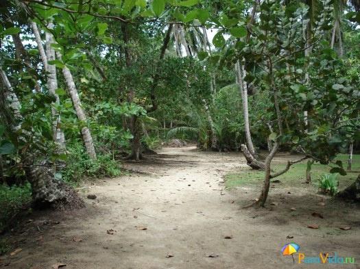 Карибское побережье 5