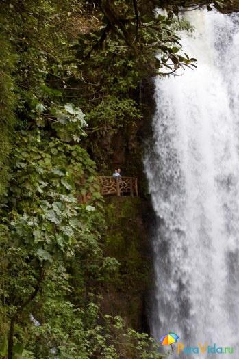 Водопадик в национальном парке