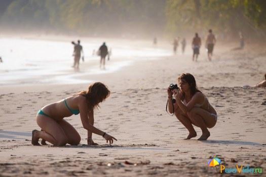 Пляж Мануэль Антонио. Сезон